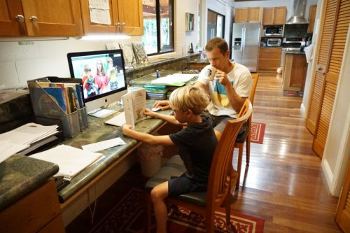 Homeschool Updates 2016, Part I/II:   Elementary and Middle School
