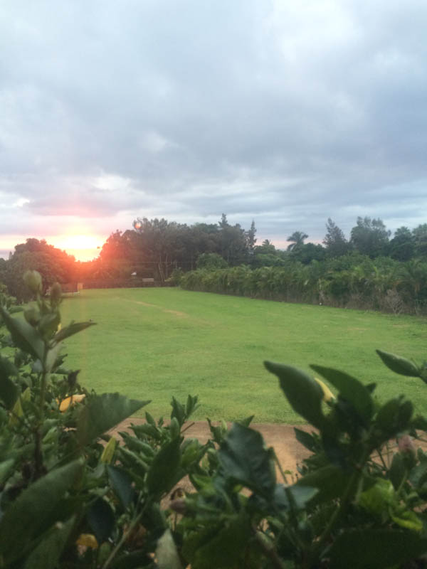 sunset and parenting talk at thegrommom.com