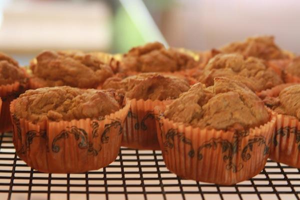 fall pumpkin muffins