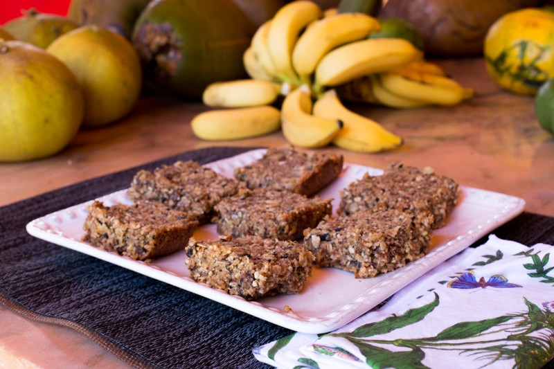 Dr. Ted's Nut Bars