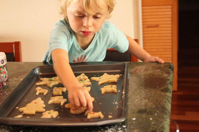 Levi Cookies