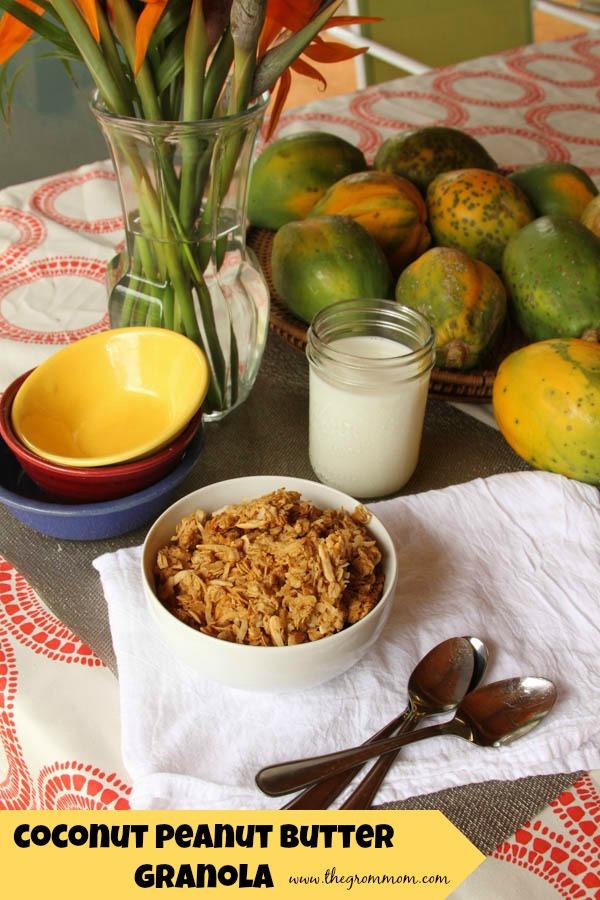coco-peanutbutter granola