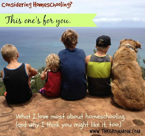Considering Homeschooling?  This One's For you.    {A V-log}